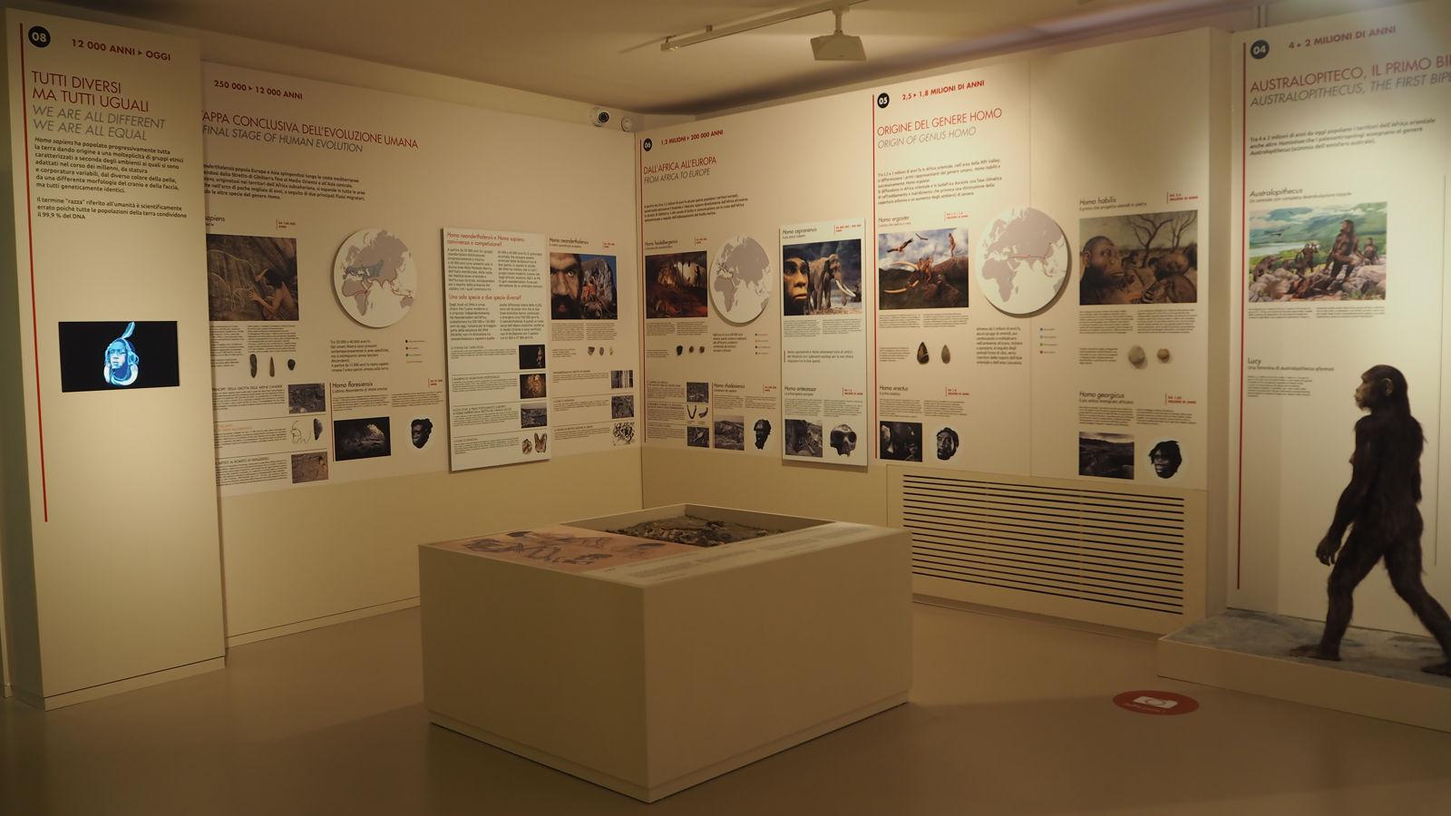 Un 2018 di successi per il Civico Museo Archeologico di Camaiore