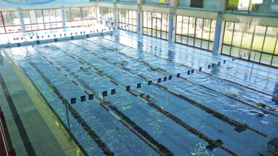 Centomila euro di investimento per ammodernare Palasport e piscina