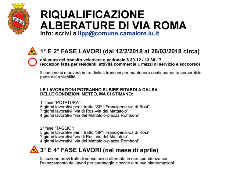 Partiranno il 12 febbraio i lavori per la riqualificazione delle alberature di Via Roma