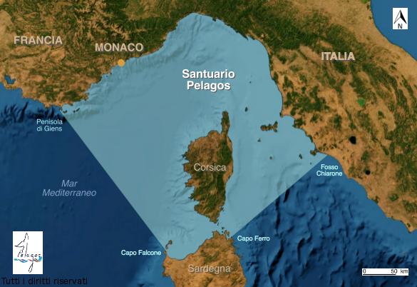 Cerimonia di sottoscrizione della Carta di Partenariato Pelagos da parte dei Comuni di Pisa, Camaiore e Pietrasanta